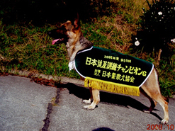 champoon_nagasaki2